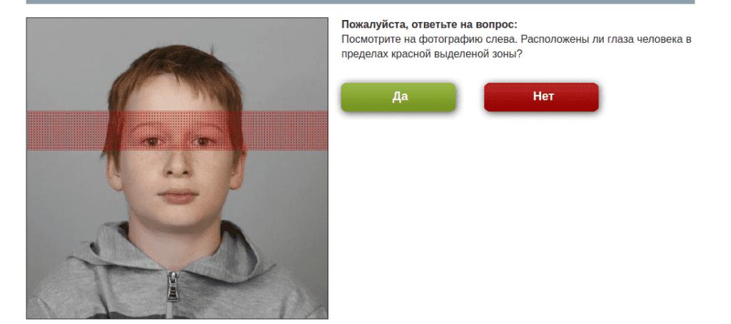 foto-green-card-13-1024x454 (1)