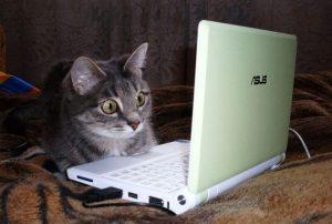 Хороший ноутбук 5